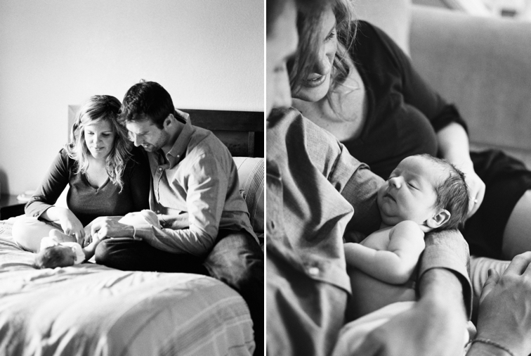 Fort Collins Newborn Portraits  Danielle DeFiore Photography