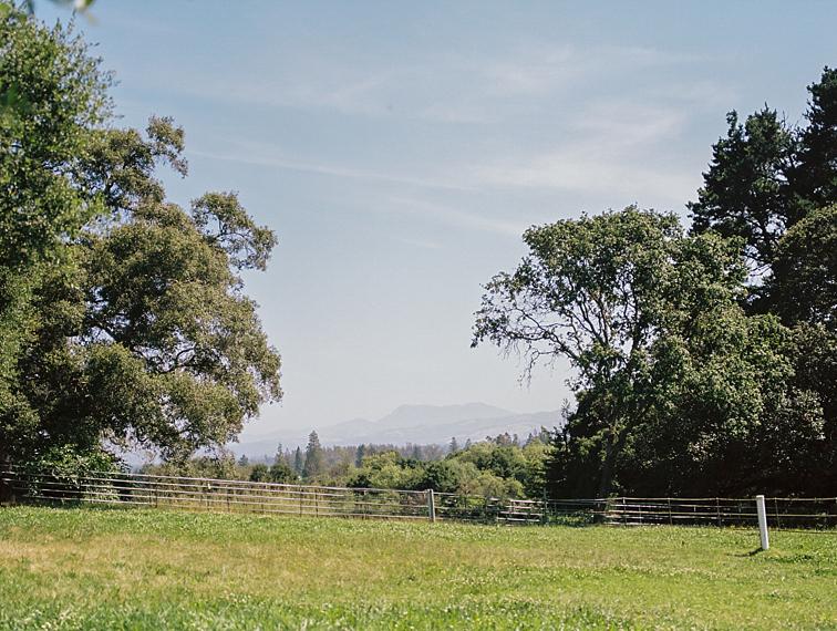 Northern California Organic Farms