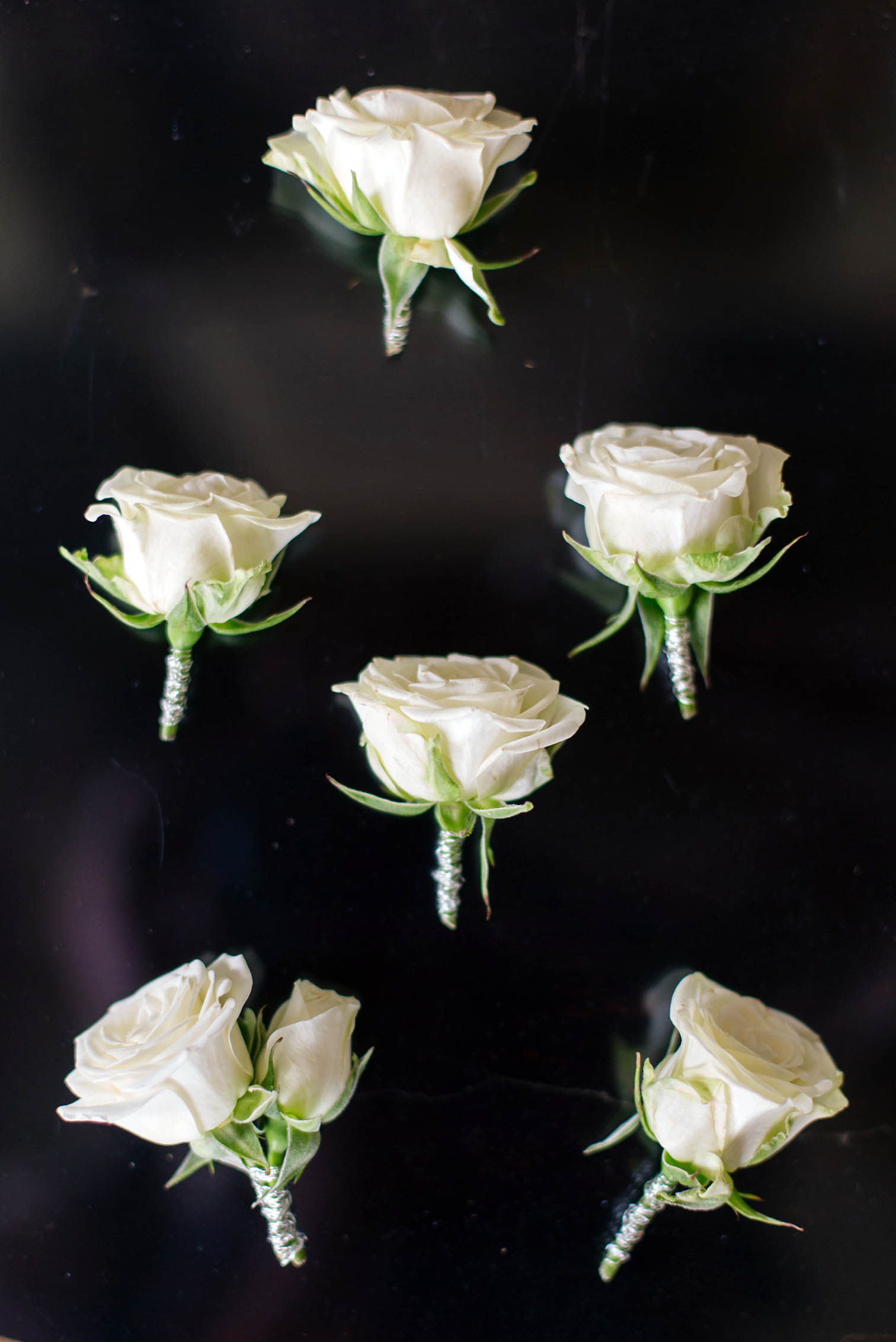 White Roses, Wedding Boutonniere Ideas, Lace Wedding Dress, Rolleiflex Camera, Mountain Weddings, Danielle DeFiore Photographer, Colorado Wedding Photographers, Castle Wedding, Classic Black tie Wedding, Film Photographer, Colorado Weddings