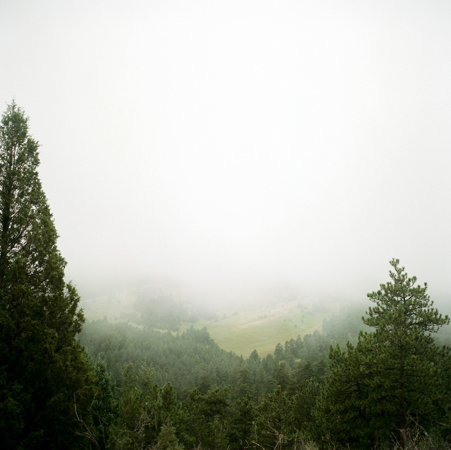 Colorado Engagement Photography, Colorado Engagement Photos, Denver Wedding Photographer, Engagement Photos In Colorado, Film Photographers In Colorado, Rolleiflex Portraits, Film Wedding Photographers, Best Engagement Photos In Colorado, Danielle DeFiore Photographers, Fog On Mountains, Golden Colorado