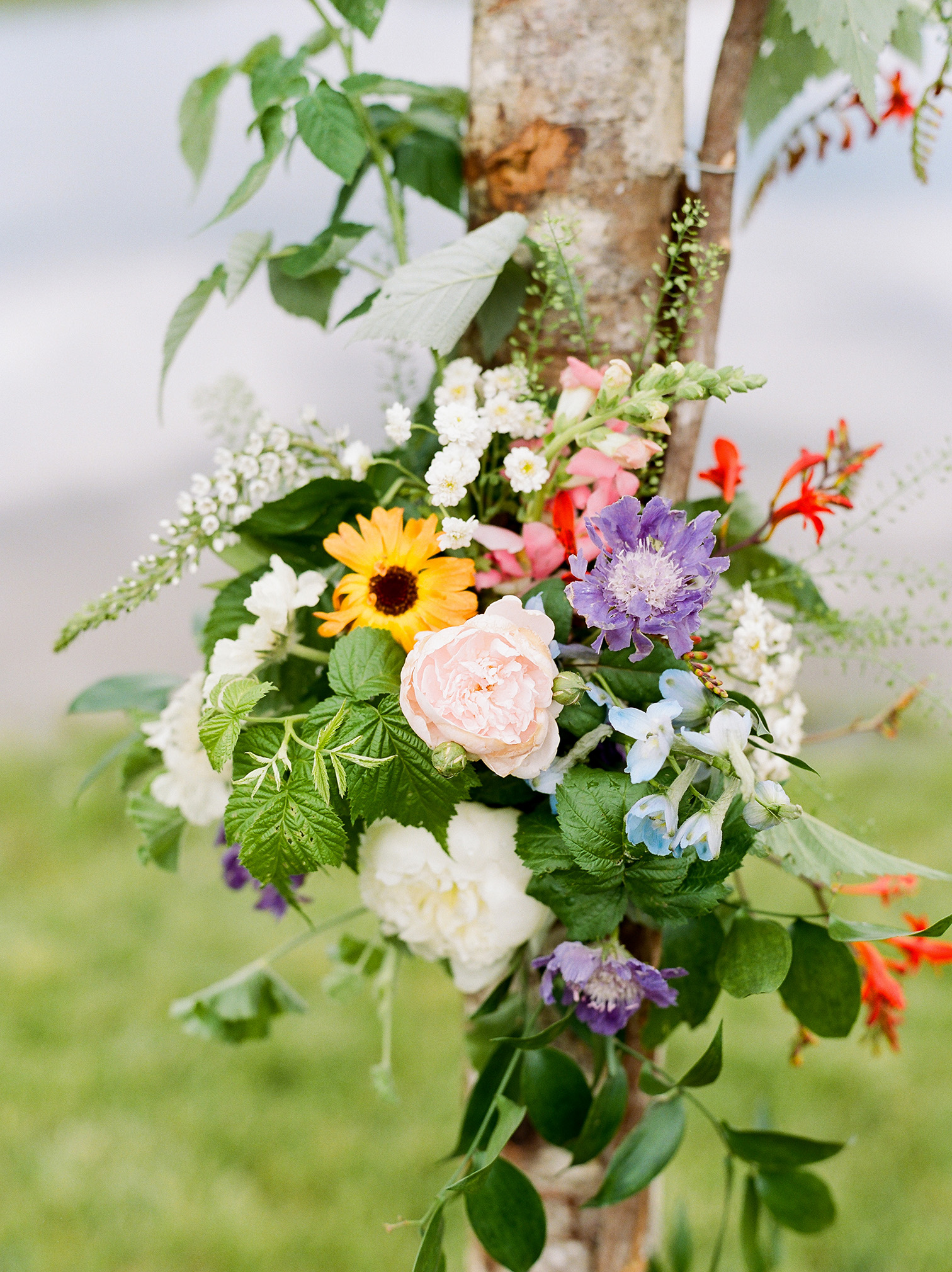 Colorado Destination Wedding, Wedding Flowers