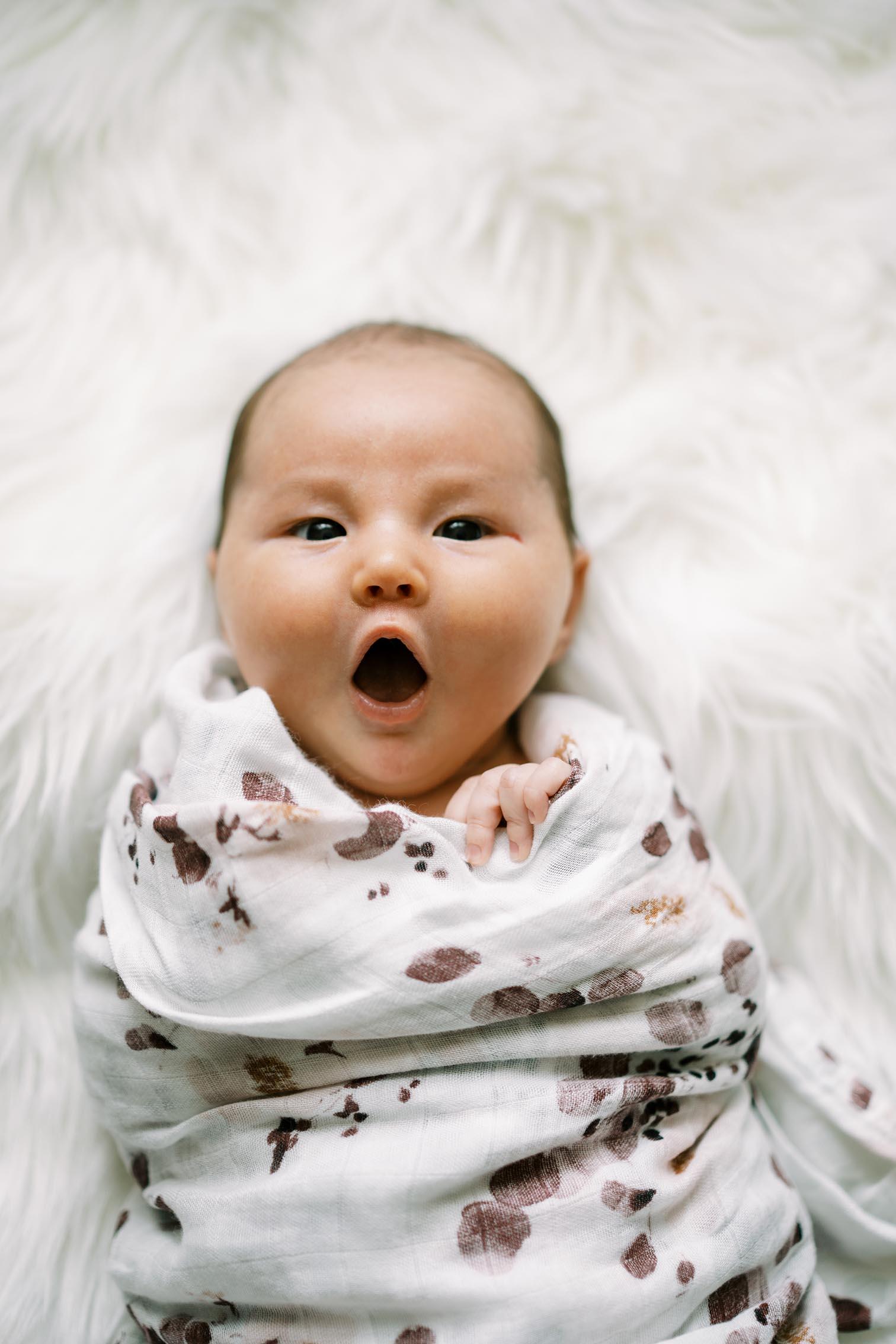 Aspen Colorado Newborn Photographers